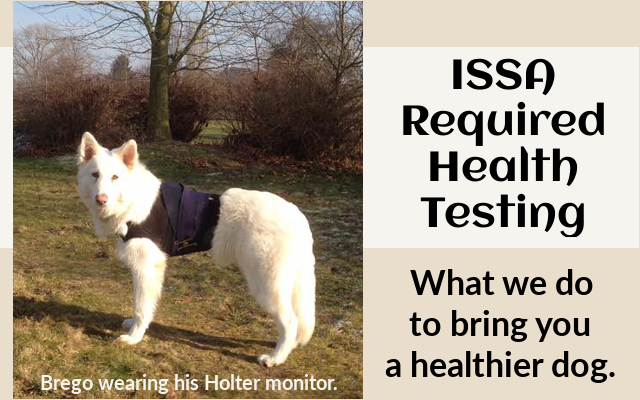 ISSA Required Health Testing bnner